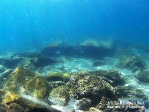 Playa Chica Tarifa Playas Cádiz, turismo, snorkel
