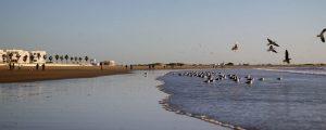 Playa de Valdelagrana El Puerto de Santa Maria Cádiz