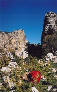 El Salto del Cabrero Parque Natural de Grazalema Foto: Mayca Gómez