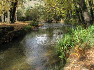 Río Majaceite Sierra de Grazalema