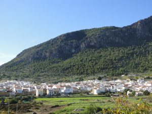 Sierra de Algodonales