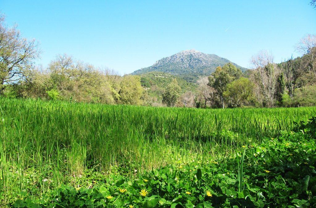 La Sierra de Cádiz, un destino de gran belleza
