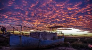 Marisma de Trebujena. FOTO: Agroicultura