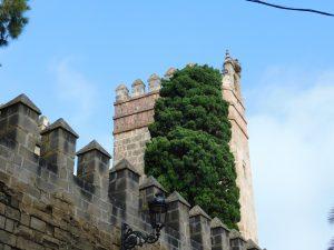 Castillo de San Marcos. El Puerto de Santa María