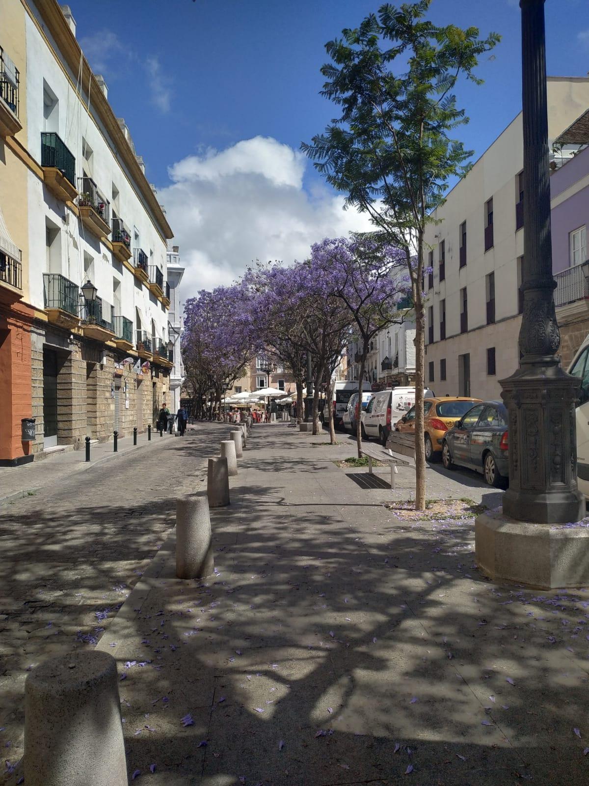 Plaza del Mentidero, Cádiz